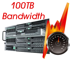 100TB Dedicated Server Hosting