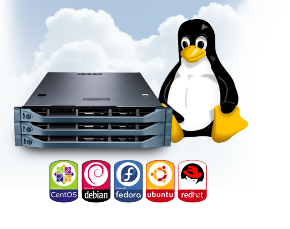 Fully Managed Linux VPS Hosting